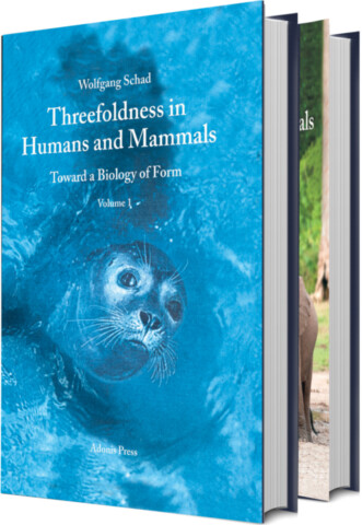 Threefoldness in Humans and Mammals