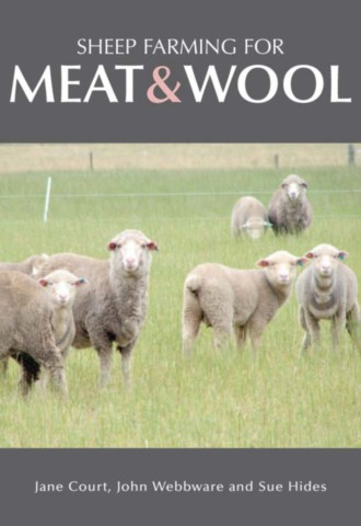 Sheep Farming for Meat and Wool