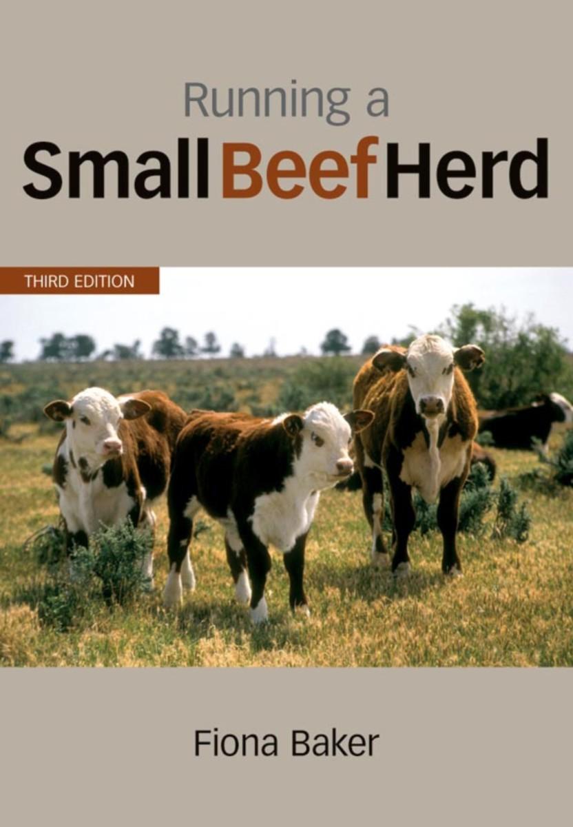 Running a Small Beef Herd