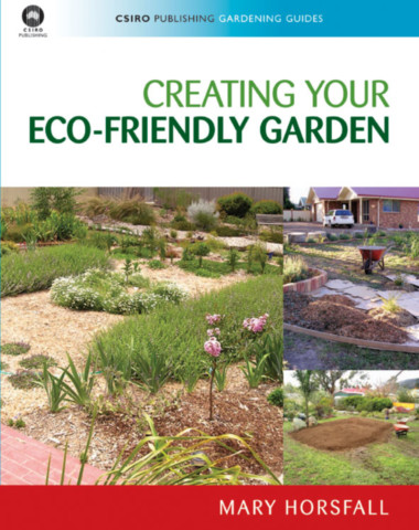 Creating Your Eco-Friendly Garden