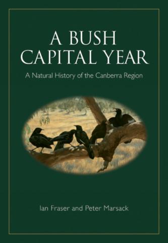 A Bush Capital Year