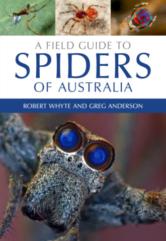 A Field Guide to Spiders of Australia