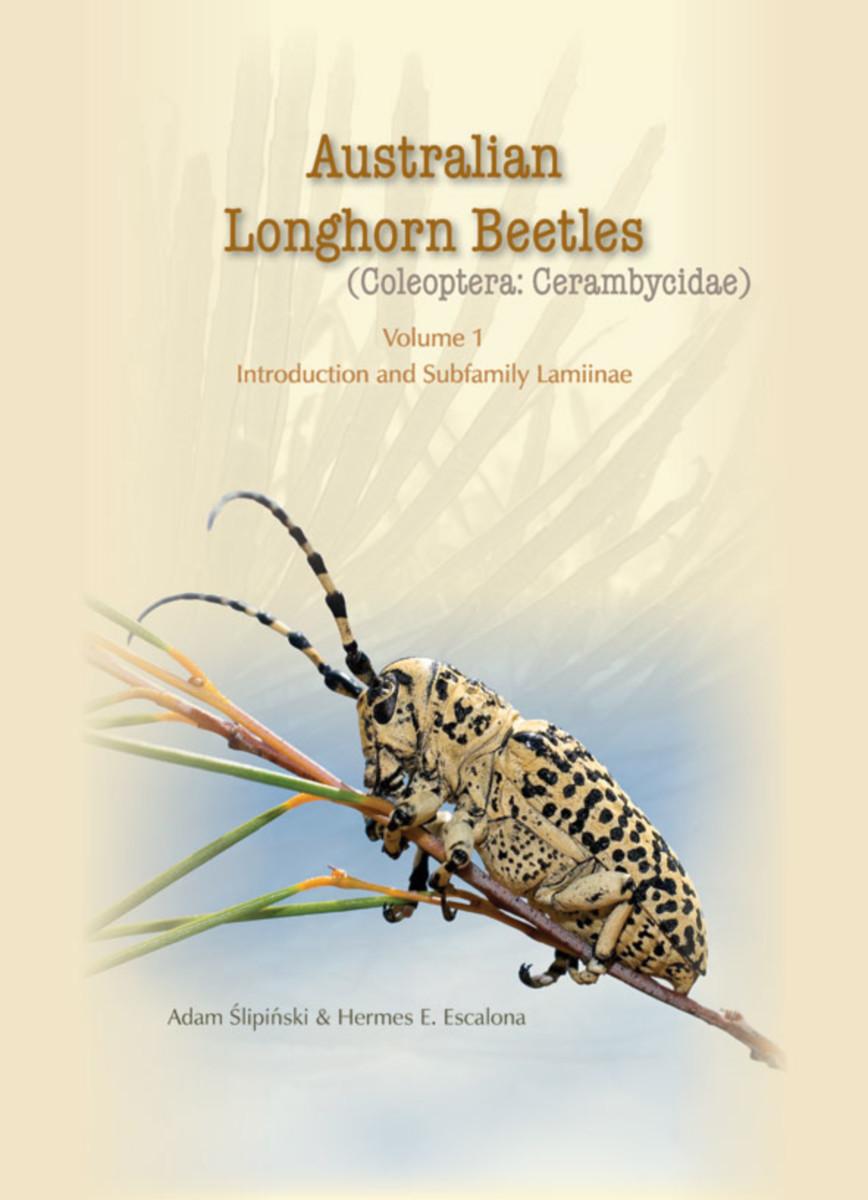 Australian Longhorn Beetles