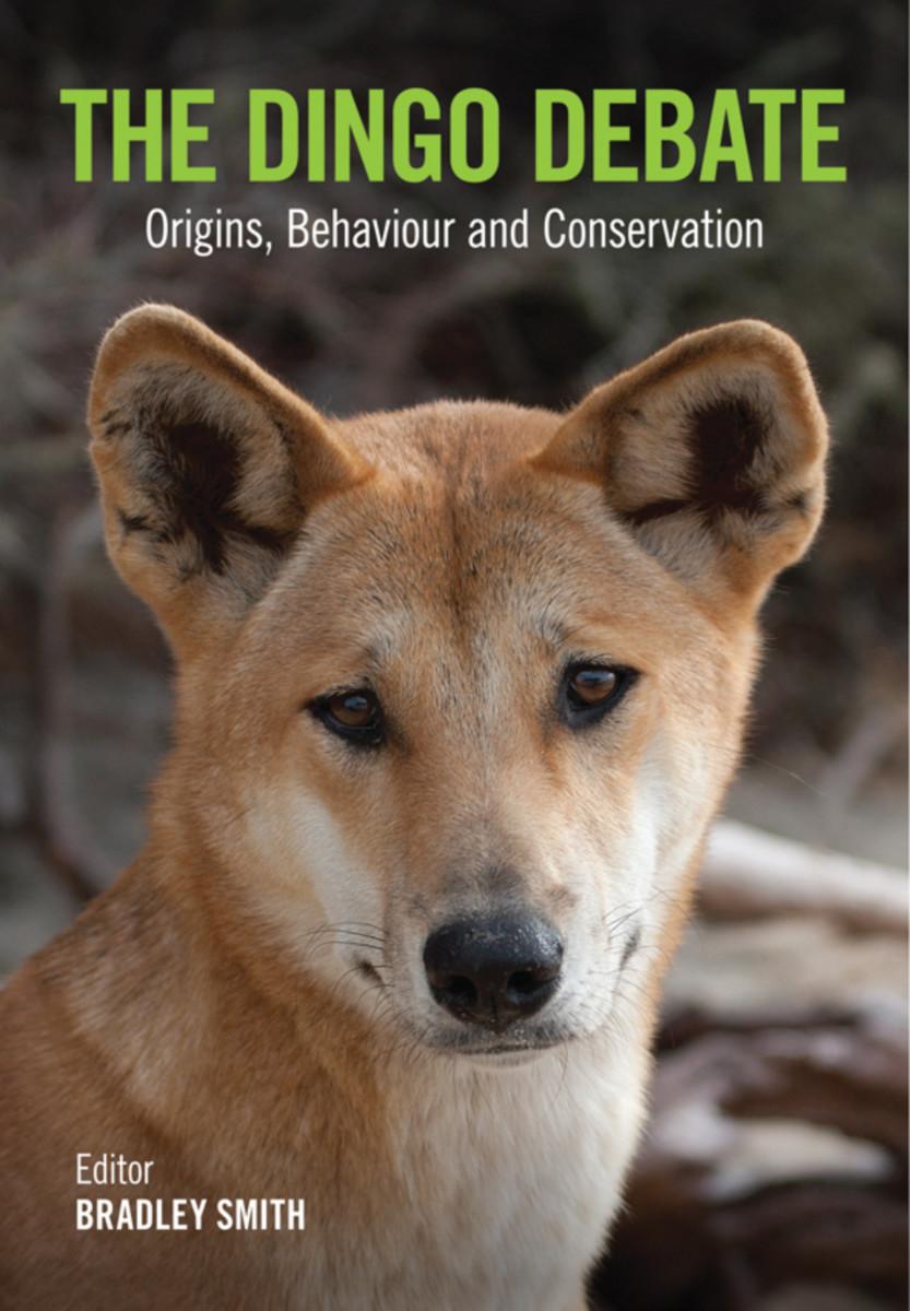 The Dingo Debate