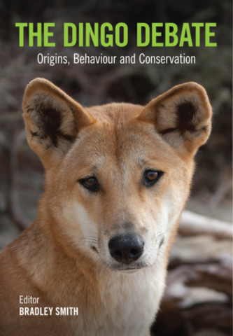 The Dingo Debate