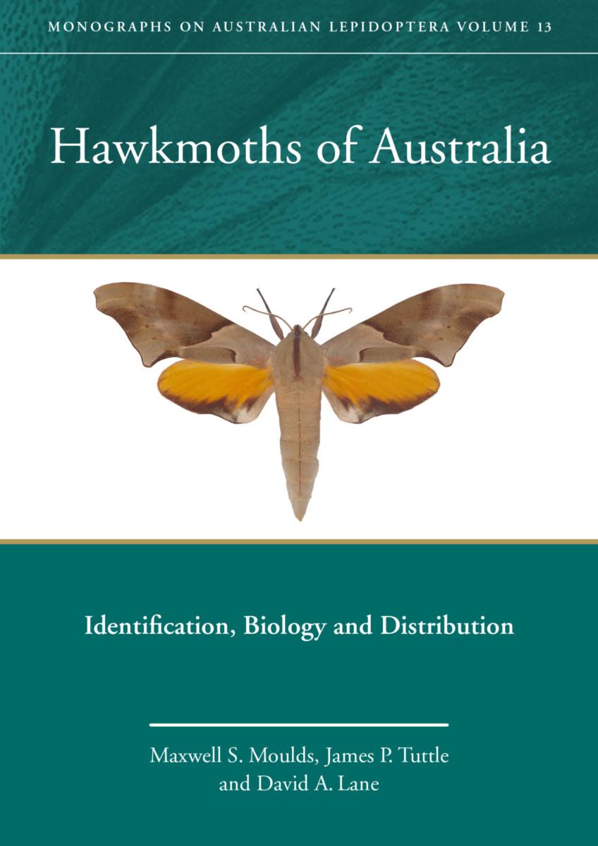Hawkmoths of Australia