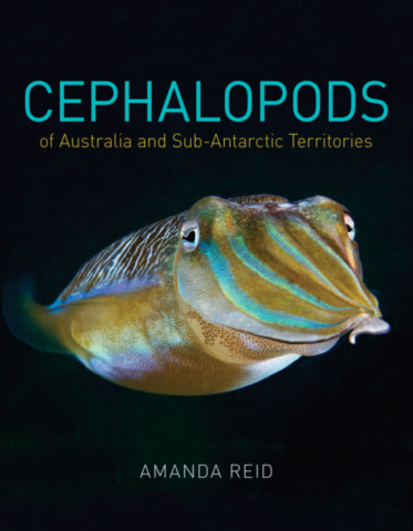 Cephalopods of Australia and Sub-Antarctic Territories