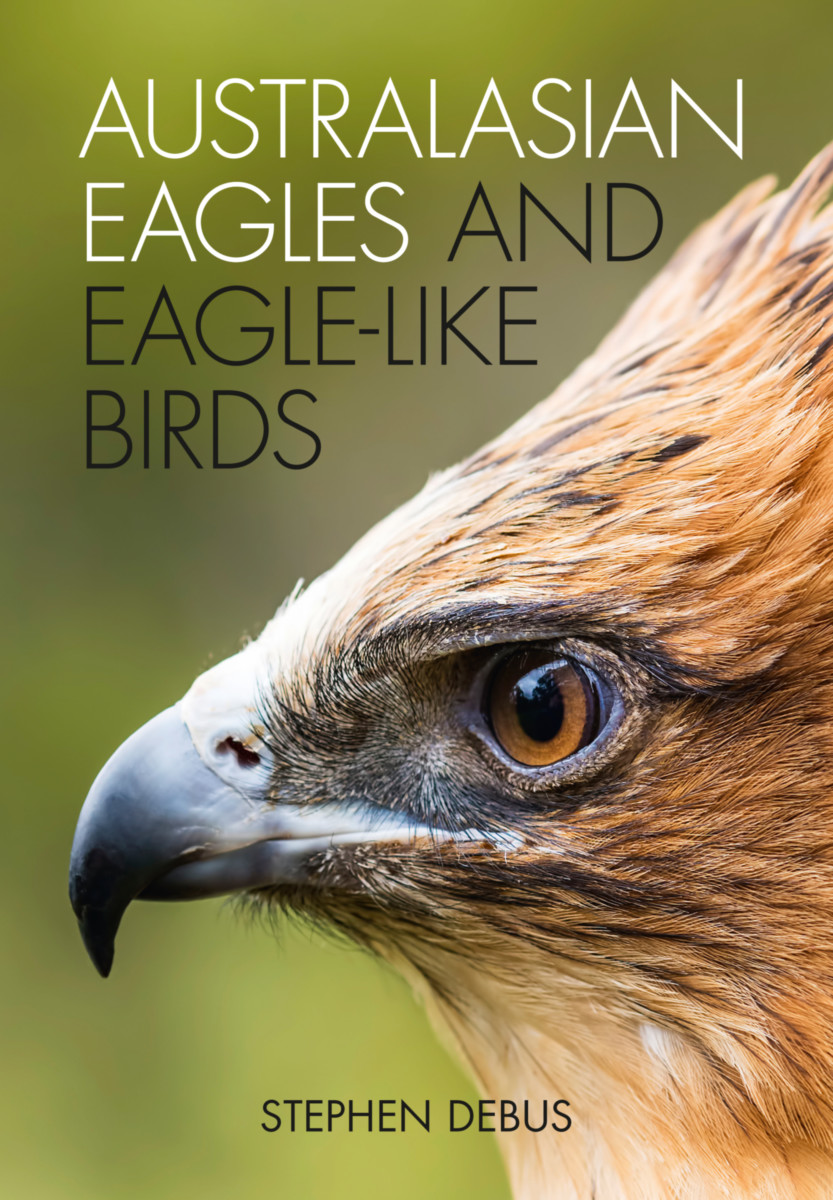 Australasian Eagles and Eagle-like Birds