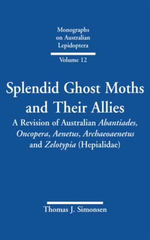 Splendid Ghost Moths and Their Allies
