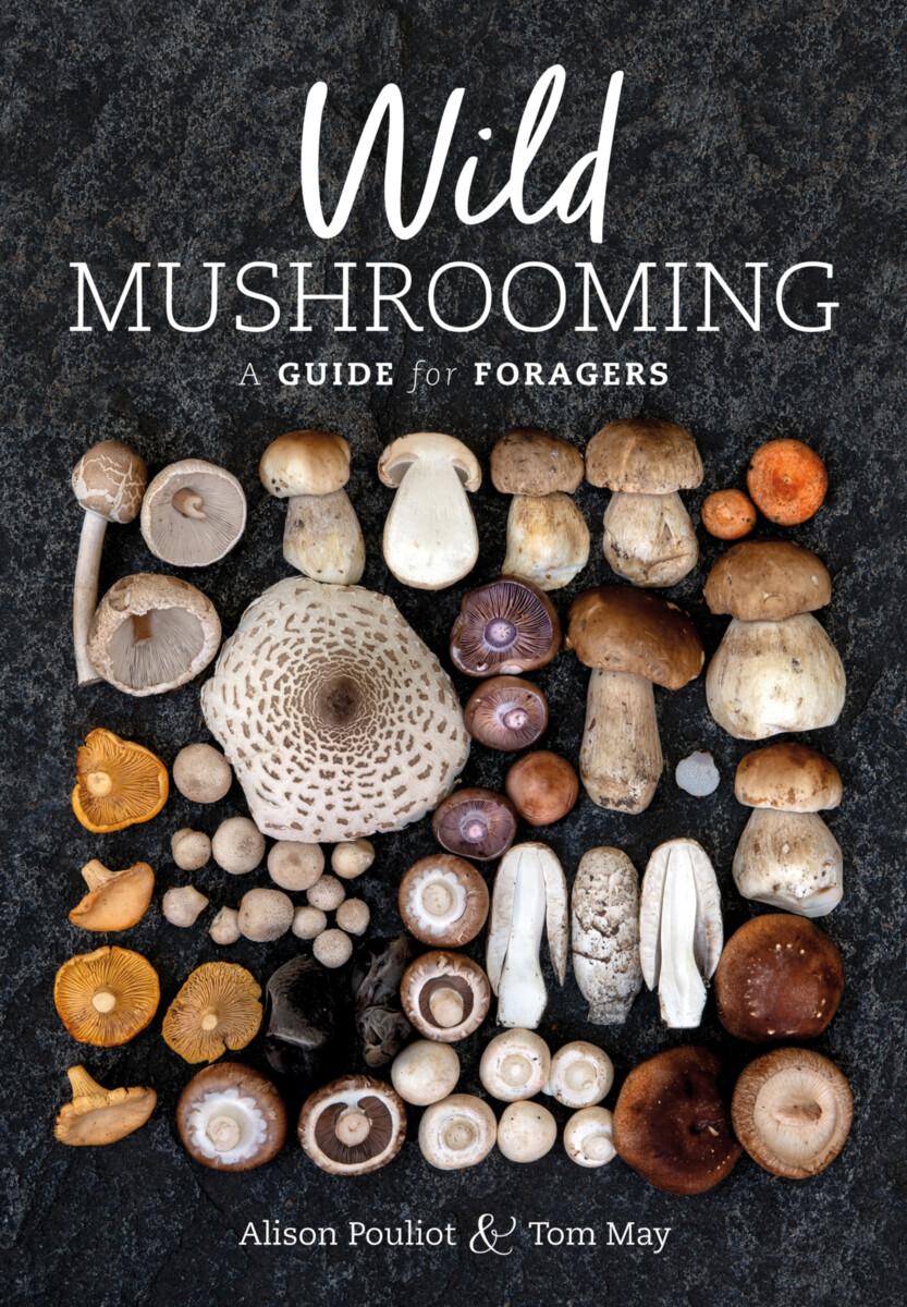 Wild Mushrooming