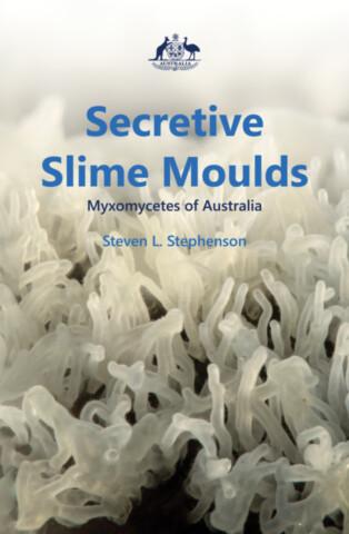 Secretive Slime Moulds