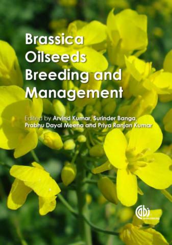 Brassica Oilseeds