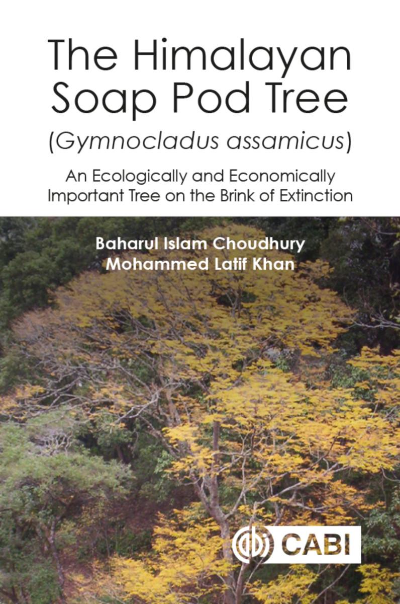 The Himalayan Soap Pod Tree (Gymnocladus assamicus)