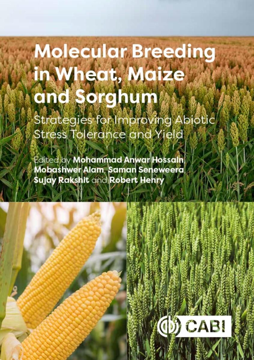 Molecular Breeding in Wheat, Maize and Sorghum