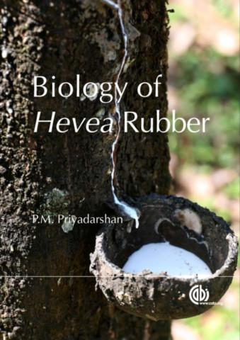 Biology of Hevea Rubber