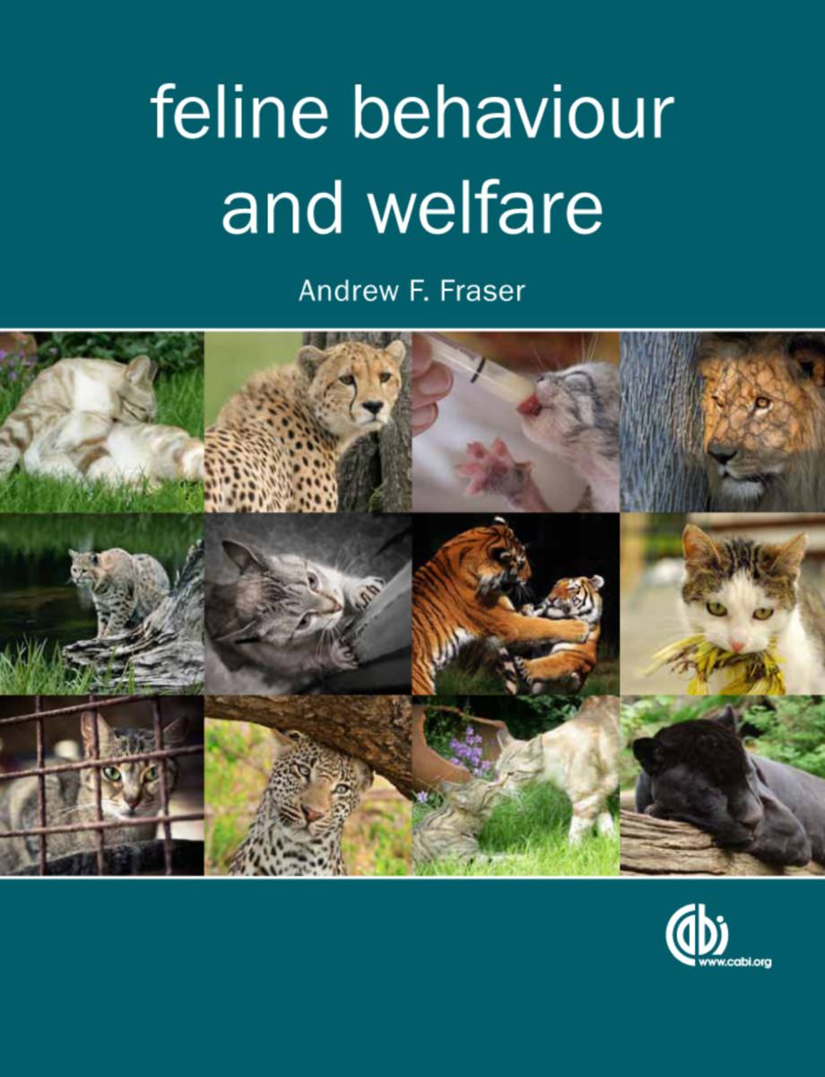 Feline Behaviour and Welfare