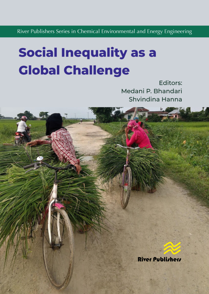 Social Inequality as a Global Challenge