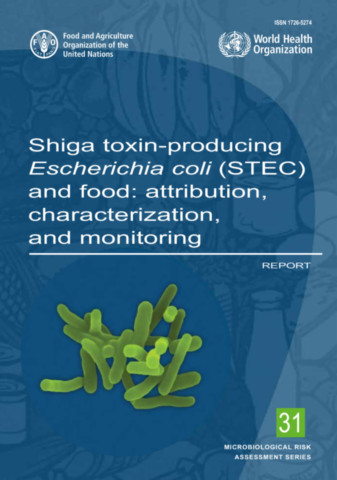 Shiga Toxin-producing Escherichia coli (STEC) and Food