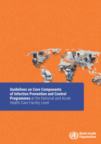 Guidelines on Core Components of Infection Prevention and Control Programmes at the National and Acute Health Care Facility Level