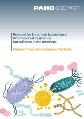 Protocol for Enhanced Isolate-Level Antimicrobial Resistance Surveillance in the Americas