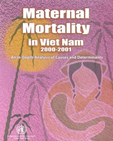 Maternal Mortality in Vietnam 2000-2001